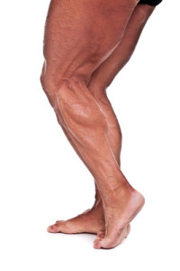 BCAAs effectively build muscle mass extending life span