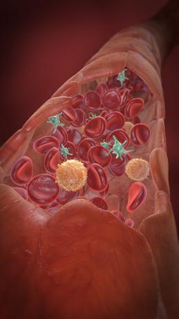 L glutamine cancer treatment xeloda