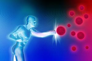 los aminoácidos apoyan el sistema inmune