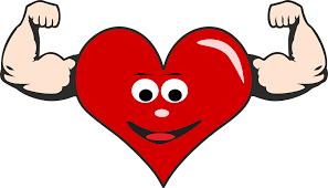 l-carnosine keeps the heart healthy